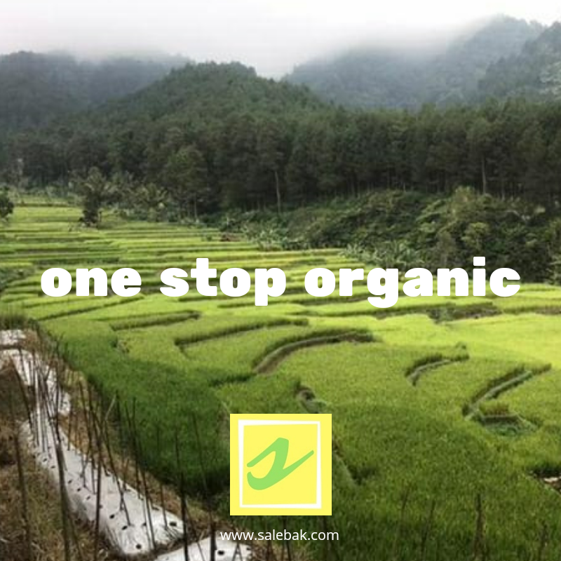 One Stop Organic System